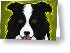 Border Collie Greeting Card