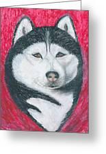 Boris The Siberian Husky Greeting Card