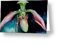 Borneo Slipper Orchid Greeting Card