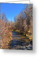 Bosque De Rio De Taos Greeting Card