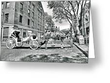Boston Buggy Greeting Card