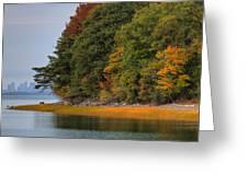 Boston In The Fall Greeting Card