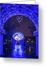 Boston Ma Christopher Columbus Park Trellis Lit Up For Valentine's Day Rainy Night Greeting Card