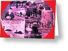 Boston Porthole Greeting Card