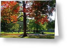 Boston Public Garden Autumn Tree Morning Light Walk In The Park Greeting Card