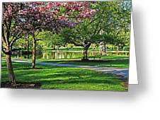 Boston Public Garden Pond Through The Cherry Blossom Spring Day Greeting Card