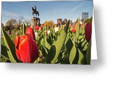 Boston Public Garden Tulips And George Washington Statue 2 Greeting Card