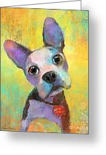Boston Terrier Puppy Dog Painting Print Greeting Card