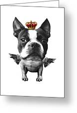 Boston Terrier, The King Greeting Card