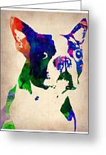 Boston Terrier Watercolor Greeting Card