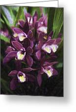 Botanic Garden Orchid Bouquet 5 Greeting Card