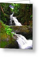 Botanic Gardens Waterfall Greeting Card