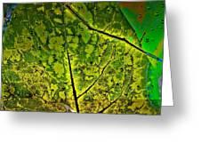 Botanic Glow Greeting Card