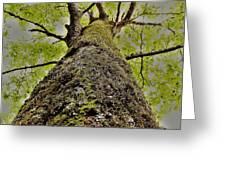 Botanical Behemoth Greeting Card