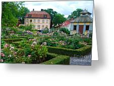 Botanical Gardens - Stockholm Sweden Greeting Card