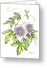 Botanical Illustration Passion Flower Greeting Card