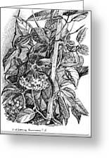 Botanical Series Greeting Card