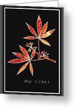 Botany 1 Greeting Card