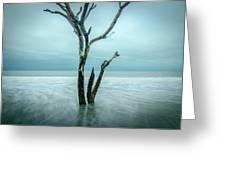Botany Bay Plantation Edisto Island Sc Greeting Card
