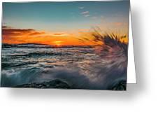 Botany Sunset Splash Greeting Card