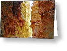 Bottom Of Wall Street On Navajo Trail In  Bryce Canyon National Park, Utah  Greeting Card