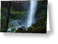 Bottom Of Watson Falls Greeting Card