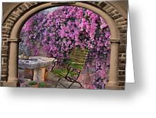 Bougainvillea 3 Greeting Card