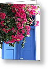 Bougainvillea And Blue Greeting Card