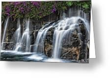 Bougainvillea Blooms Above Wailea Falls.  Greeting Card