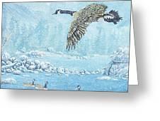 Boulder Bay Geese Greeting Card