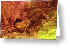 Boulder Cave  Greeting Card