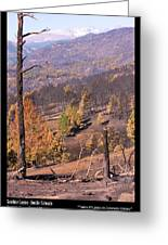 Boulder County Wildfire 5 Miles West Of Downtown Boulder Greeting Card