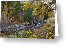 Boulder Creek Autumn View  Greeting Card
