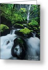 Boulder Elowah Falls Columbia River Gorge Nsa Oregon Greeting Card