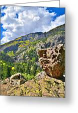 Boulder In Ouray Canyon Greeting Card