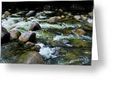 Boulders - Mossman Gorge, Far North Queensland, Australia Greeting Card
