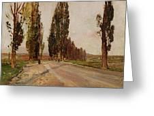 Boulevard Of Poplars Near Plankenberg Greeting Card