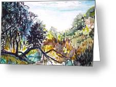 Bouquet Canyon Wash 1 Greeting Card