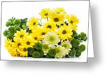 Bouquet Of Fresh Spring Flowers Isolated On White Greeting Card