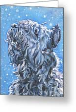 Bouvier Des Flandres Snow Greeting Card