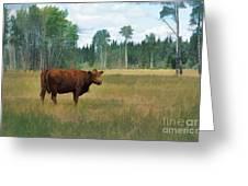 Bovine Bliss Greeting Card by Skye Ryan-Evans
