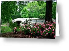 Bow Bridge In Springtime Greeting Card