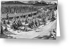 Morant's Curve Black And White Greeting Card
