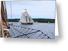 Bowditch Under Full Sail Greeting Card