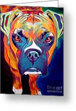 Boxer - Harley Greeting Card by Alicia VanNoy Call