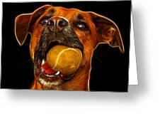 Boxer Mix Dog Art - 8173 - Bb Greeting Card