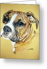 Boxer Greeting Card by Tanya Patey