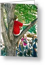 Boy In A Tree Greeting Card