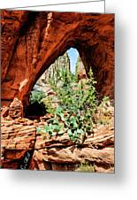 Boynton Canyon 04-634 Greeting Card