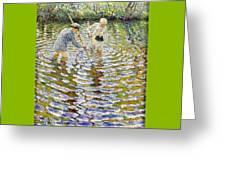 Boys Fishing For Minnows Greeting Card
